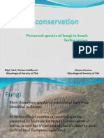 Fungal Conservation