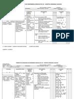 Plan de Cuidados de Enfermeria Uci Hospital Regional Huacho