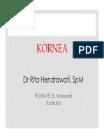 1 Anatomi kornea