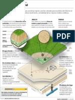 Cancha Natural.pdf