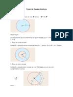 172_Áreas de Figuras Circulares