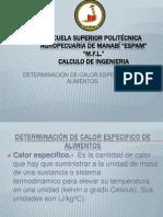 determinacindecalorespecificodealimentos-130715220147-phpapp02