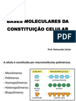 Aula de Macromoléculas