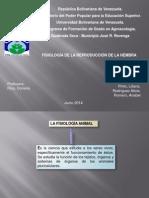 Exposicion Fisiología de Reproducción de La Hembra