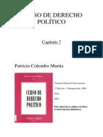 Curso de Derecho Politico - Capitulo 07