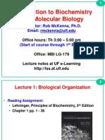 L1_Biological+Organization-v+_2_