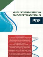 Perfiles Transversales o Secciones Transversales