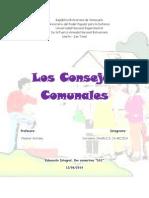 Consejo Comunal