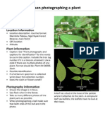 Plant Photo Guide by Matt Walters
