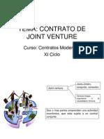 Joint Venture 52071