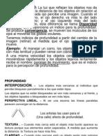 Clase 7 - El Sistema Visual