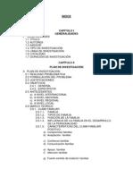 indice proyecto agresividad.docx
