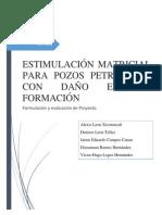 Proyecto de Inversion - Estimulación Matriciall