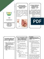 Leaflet Apendisitis