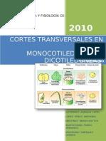 50821043 Cortes Transversales en Plantas Monocotiledoneas y Dicotiledoneas
