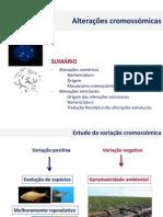 2014 CMA  alteracoes cromossomicas.pdf
