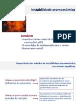 2014 CMA Instabilidade cromossomica.pdf