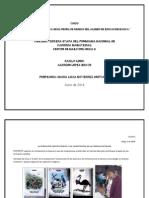 trabajo final 2.pdf