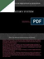 Psycho Auditory System