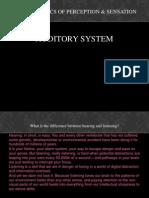 Psycho Auditory System Scribd