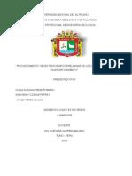 Informe de Sedimentologia y Estratigrafia