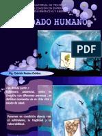 Cuidado Humano