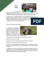 Desarrollo Comunitario Subgrupo (1)