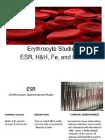 Erythrocyte