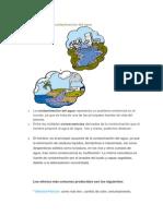 Efectos de La Contaminación Del Agua.