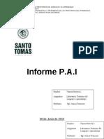 Informe PAI