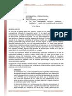 01. Virus Generalidades Lectura
