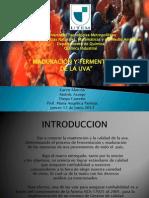 Fermentacion y Maduracion2014