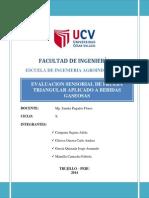 Informe Prueba Triangular
