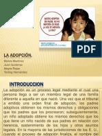 La Adopcion Examen Civil Final