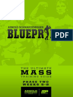 Arnold blueprint Mass Phase two