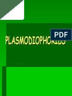 2.- PLASMODIOPHORIDS