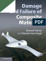 Damage Failure of Composite Parts