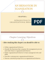 human behavior in organization chapter 1.