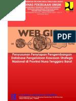 Pre Liminary Report of Penyiapan Pengembangan Database Pengelolaan Kawasan Strategis Nasional di Provinsi Nusa Tenggara Barat