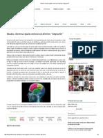 Studiu_ Somnul Ajută Creierul Să Elimine _deșeurile