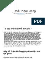 Dịch Vụ Diệt Mối Chuyên Nghiệp - Diệt Mối Triệu Hoàng