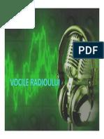 Vocile radioului