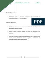 Proyecto de Investigacion Para Identificar El Costo de Produccion de Una Ladrilleria