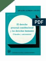 Derecho Procesal Constitucional y Los Derechos Humanos de MEXICO- PDF