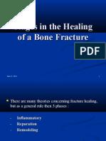 Penyembuhan tulang