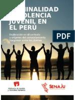 criminalidadyviolenciaenelper02-140120184119-phpapp01