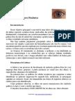 Curso de Leitura Dinâmica1