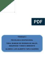 monografia de manejo de riesgos.doc