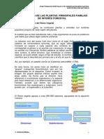 Clasificación Plantas y Texto