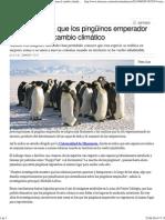 Pinguinos y Cambio Climatico